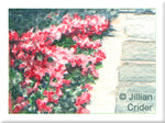 rose path garden original watercolor painting dollhouse 1:12 scale