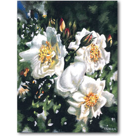 Original acrylic on canvas SFA 14x11 white roses